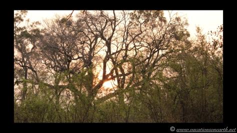Namibia 2013 - Nambwa 17 Aug.019