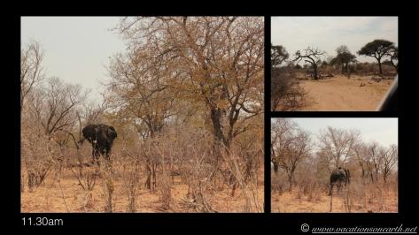 Namibia 2013 - Nambwa and Susuwe Office, 18 Aug.006