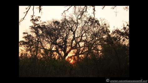 Namibia 2013 - Nambwa Campsite, 16 Aug.012