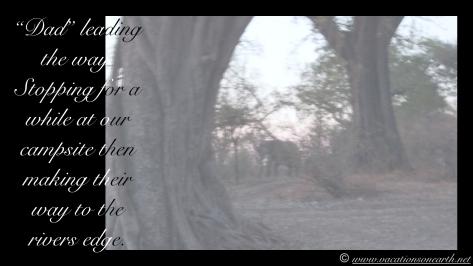 Namibia 2013 - Nambwa Campsite, 16 Aug.019
