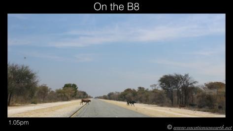 Namibia 2013 - Road trip from Nambwa Camp to Samsitu Riverside Camp, Rundu, 18 Aug.001