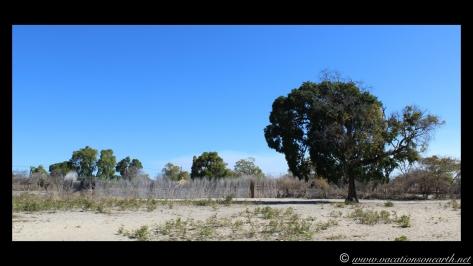Namibia 2013 - Road trip from Nambwa Camp to Samsitu Riverside Camp, Rundu, 18 Aug.010