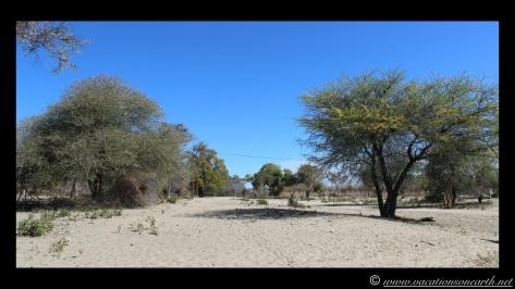 Namibia 2013 - Road trip from Nambwa Camp to Samsitu Riverside Camp, Rundu, 18 Aug.012