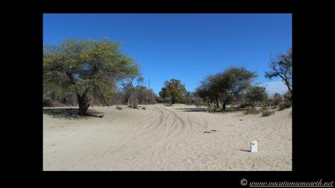 Namibia 2013 - Road trip from Nambwa Camp to Samsitu Riverside Camp, Rundu, 18 Aug.013
