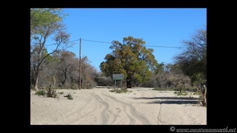 Namibia 2013 - Road trip from Nambwa Camp to Samsitu Riverside Camp, Rundu, 18 Aug.014