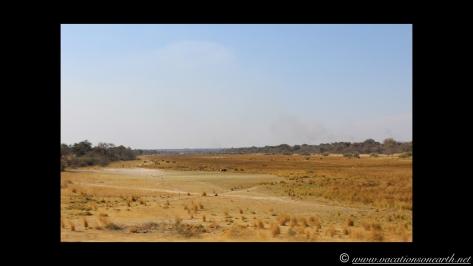 Namibia 2013 - Road trip from Nambwa Camp to Samsitu Riverside Camp, Rundu, 18 Aug.017