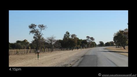 Namibia 2013 - Road trip from Nambwa Camp to Samsitu Riverside Camp, Rundu, 18 Aug.019