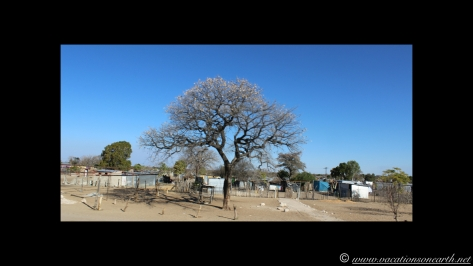Namibia 2013 - Road trip from Nambwa Camp to Samsitu Riverside Camp, Rundu, 18 Aug.023