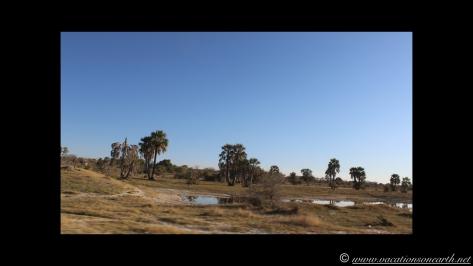 Namibia 2013 - Road trip from Nambwa Camp to Samsitu Riverside Camp, Rundu, 18 Aug.036