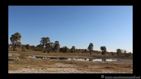 Namibia 2013 - Road trip from Nambwa Camp to Samsitu Riverside Camp, Rundu, 18 Aug.037