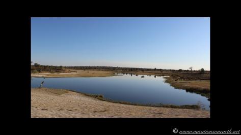 Namibia 2013 - Road trip from Nambwa Camp to Samsitu Riverside Camp, Rundu, 18 Aug.039