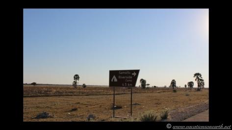 Namibia 2013 - Road trip from Nambwa Camp to Samsitu Riverside Camp, Rundu, 18 Aug.042
