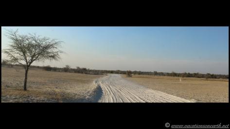Namibia 2013 - Road trip from Nambwa Camp to Samsitu Riverside Camp, Rundu, 18 Aug.044