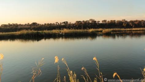 Namibia 2013 - Samsitu Riverside Camp, Rundu.006