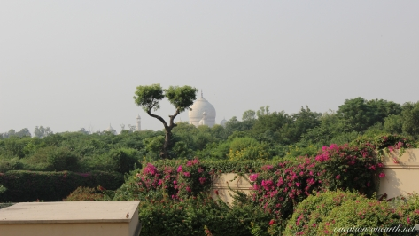 Agra, The Oberoi Amarvilas Hotel.011