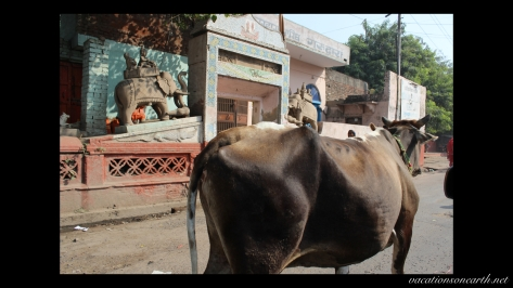 New Delhi to Agra drive.025