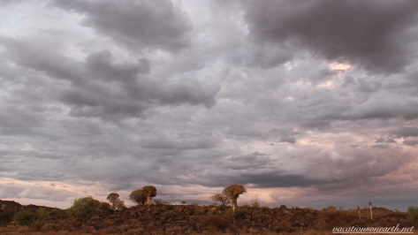 Quivertree Forest Rest Camp, Keetmanshoop, Karas, Namibia, Dec 2015.005